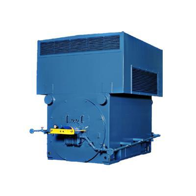 东元高压电机ANCK系列